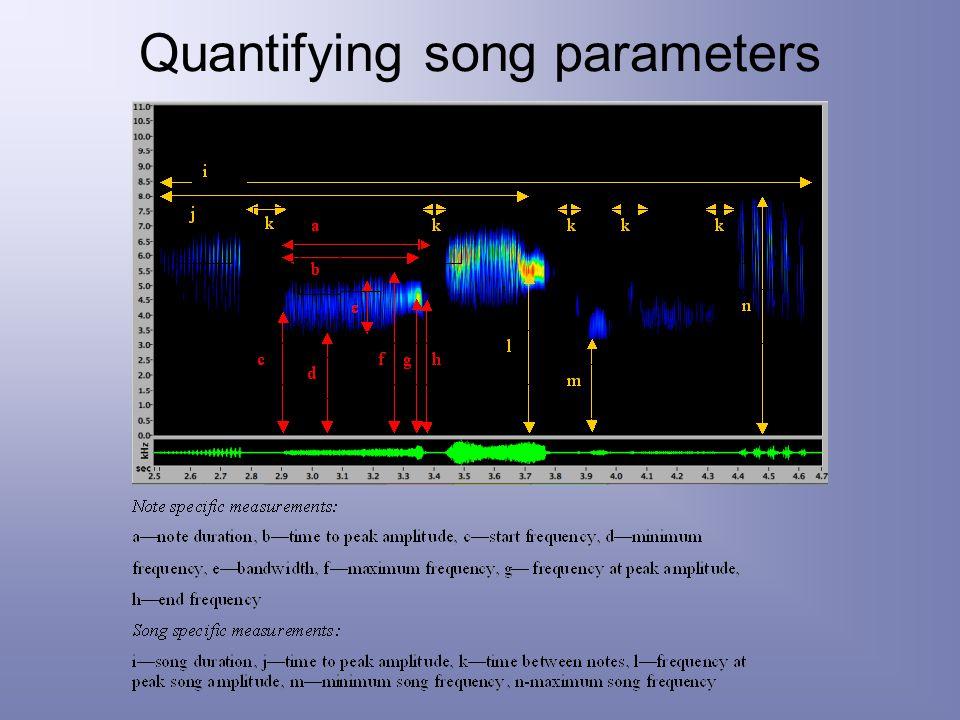 Quantifying song parameters