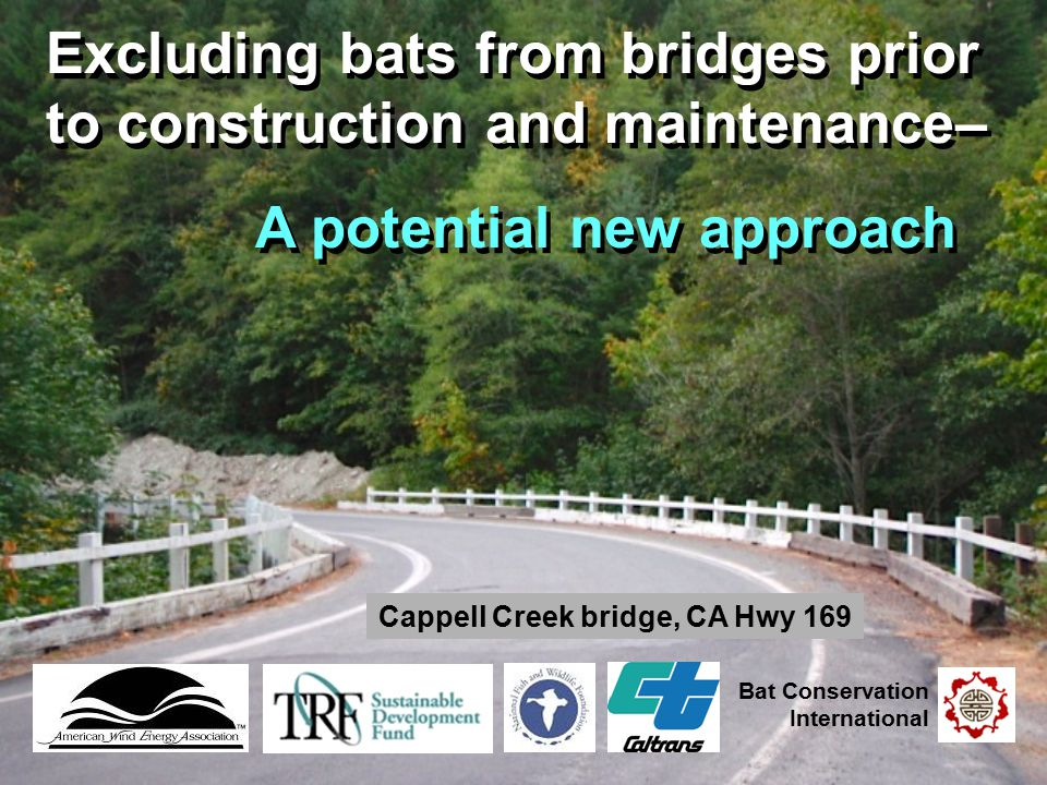 Excluding bats from bridges prior to construction and maintenance– A potential new approach Excluding bats from bridges prior to construction and main