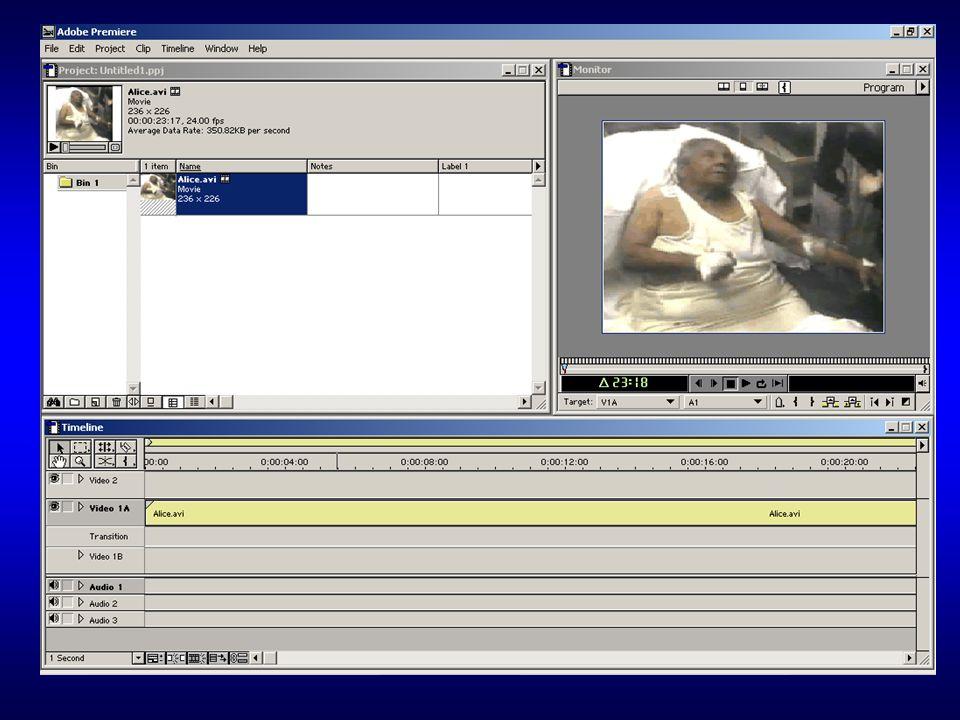 Thus Far… Ability to record audio/video Edit audio/video Export as standard media: avi mpg pic wav MP3