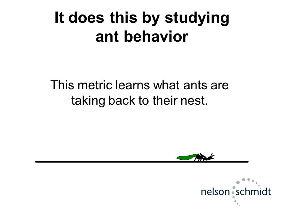 It does this by studying ant behavior This metric learns what ants are taking back to their nest.