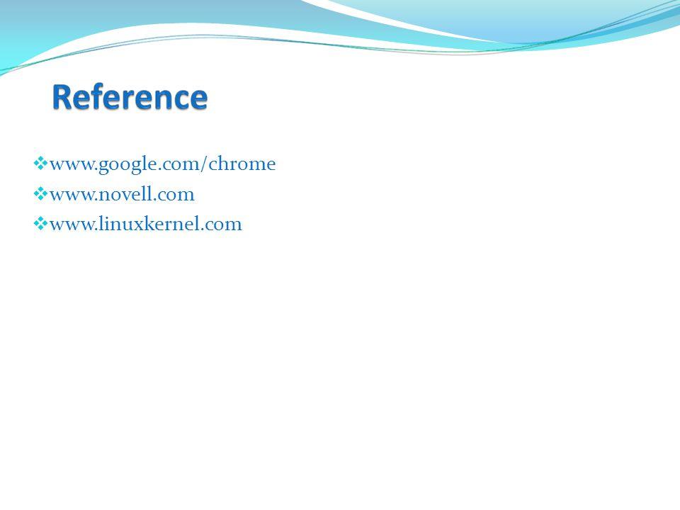  www.google.com/chrome  www.novell.com  www.linuxkernel.com