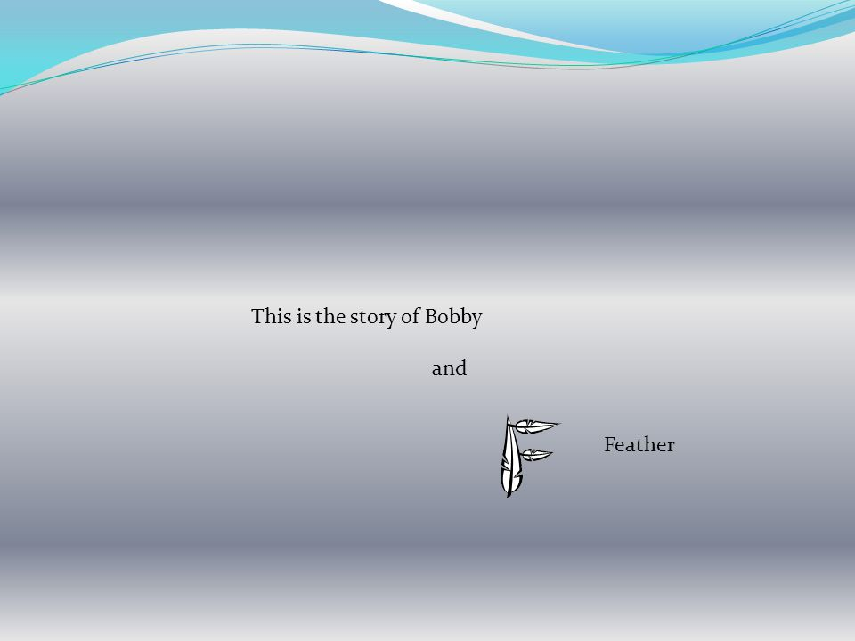 This is the story of Bobby and Feather