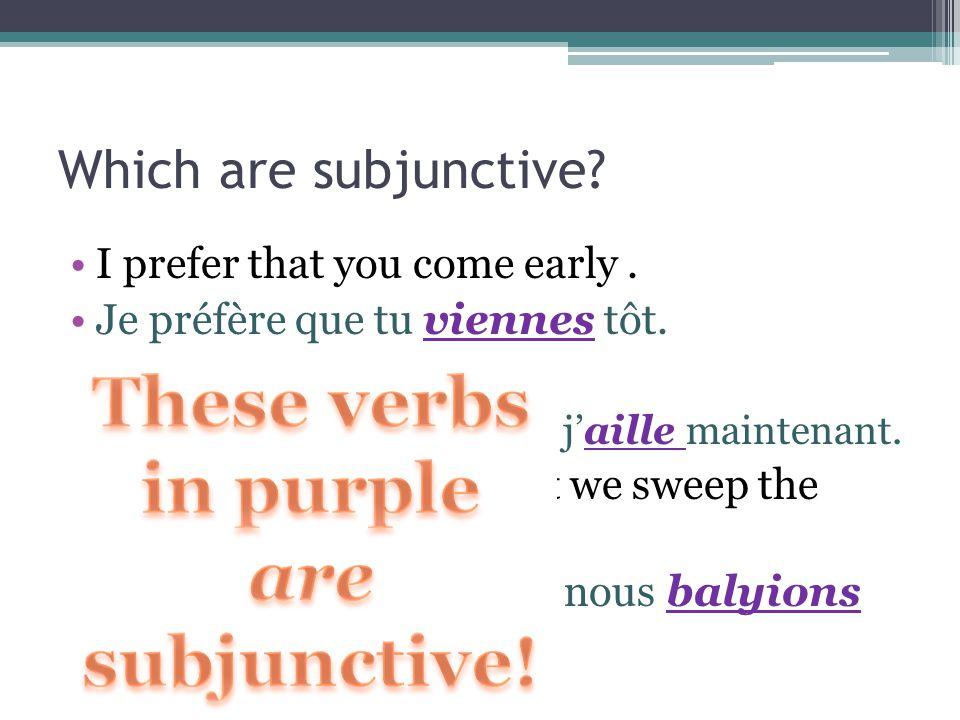 Rappel! Subjunctive always follows que