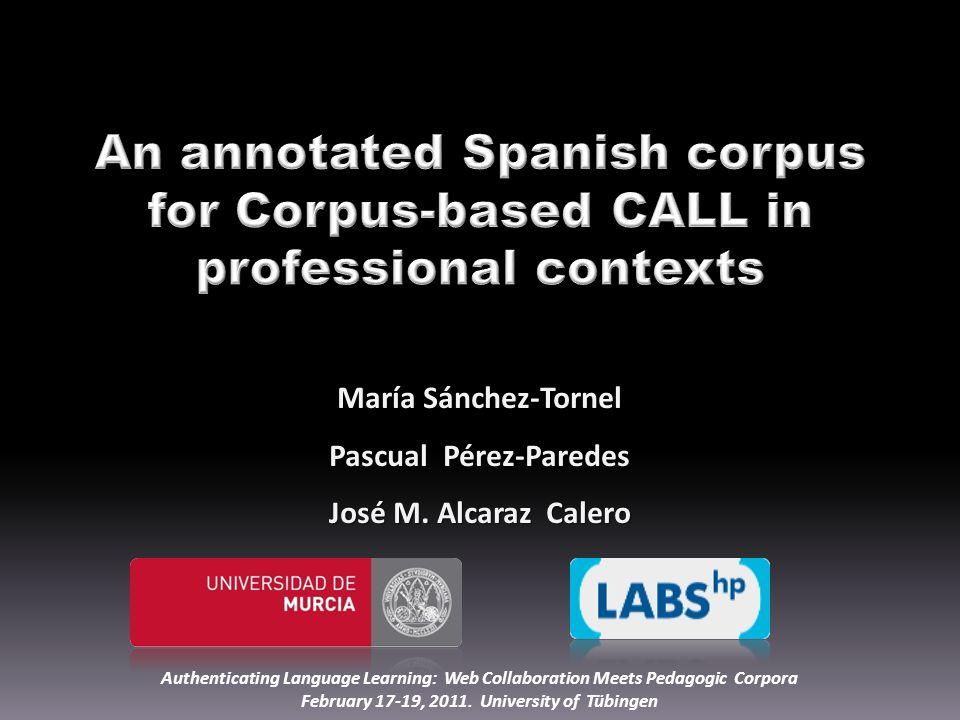 María Sánchez-Tornel Pascual Pérez-Paredes José M.