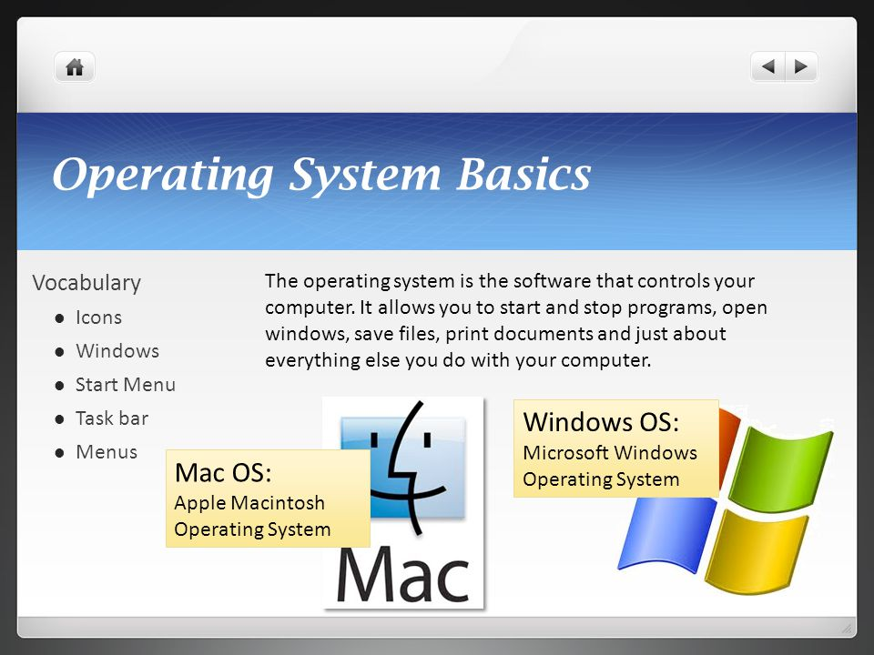 Operating System Basics Vocabulary Icons Windows Start Menu Task bar Menus The operating system is the software that controls your computer. It allows