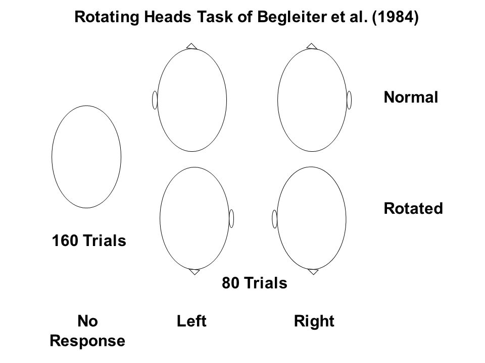 Normal Rotated LeftRightNo Response Rotating Heads Task of Begleiter et al.