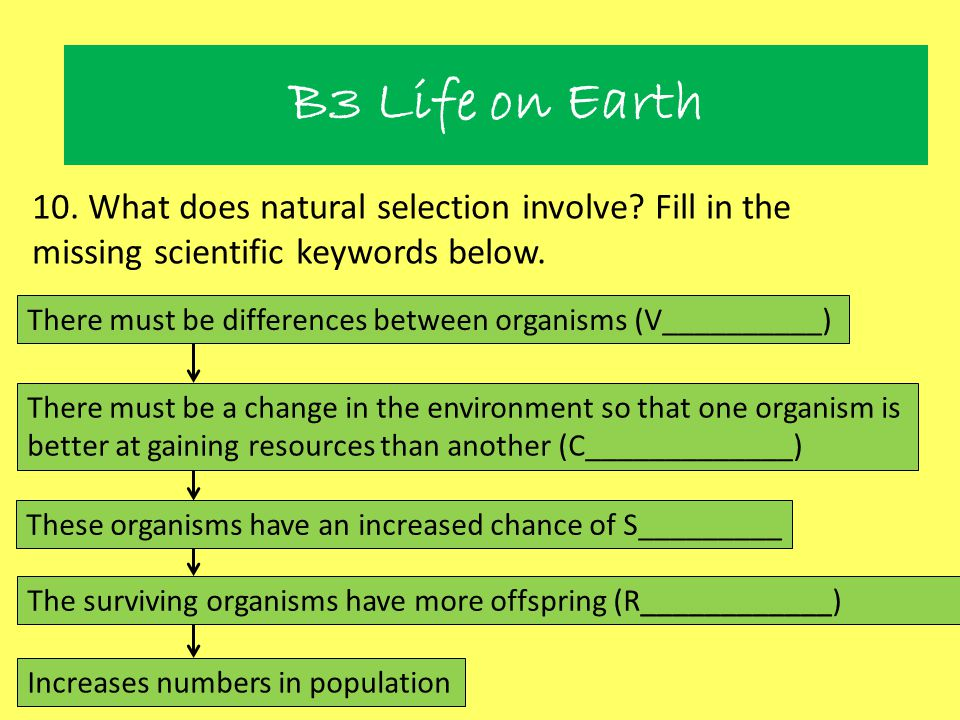 Natural Selection 10. What does natural selection involve? Fill in the missing scientific keywords below. There must be differences between organisms