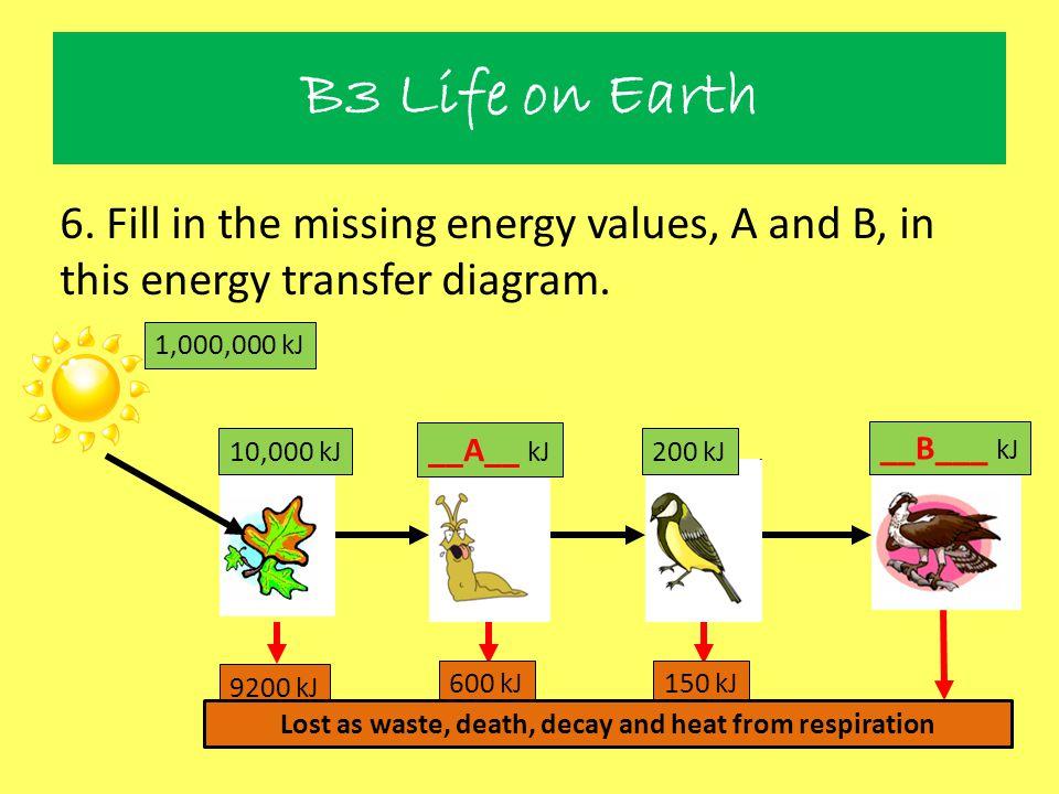 B3 Life on Earth 6. Fill in the missing energy values, A and B, in this energy transfer diagram. 1,000,000 kJ 10,000 kJ 9200 kJ 150 kJ600 kJ Lost as w