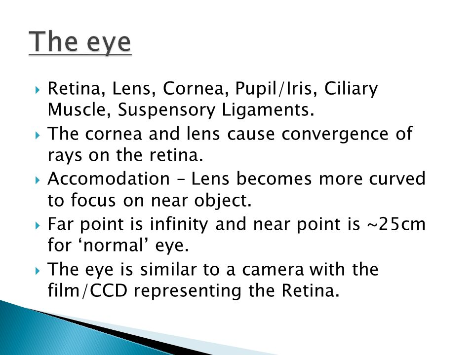  Retina, Lens, Cornea, Pupil/Iris, Ciliary Muscle, Suspensory Ligaments.  The cornea and lens cause convergence of rays on the retina.  Accomodatio