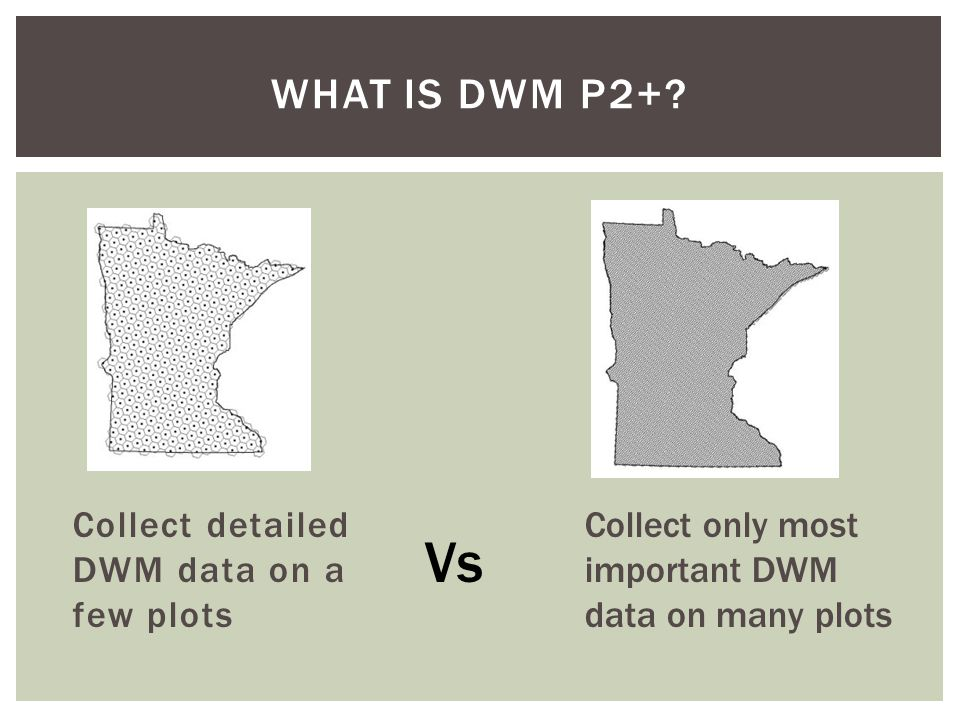 WHAT IS DWM P2+? Collect detailed DWM data on a few plots Collect only most important DWM data on many plots Vs