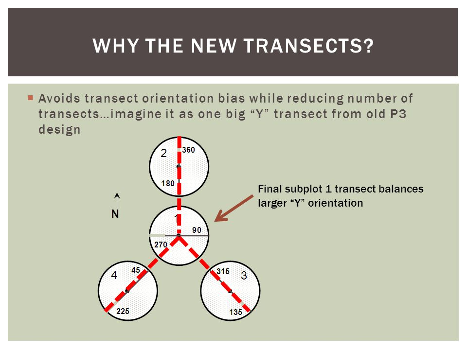  Avoids transect orientation bias while reducing number of transects…imagine it as one big Y transect from old P3 design WHY THE NEW TRANSECTS.