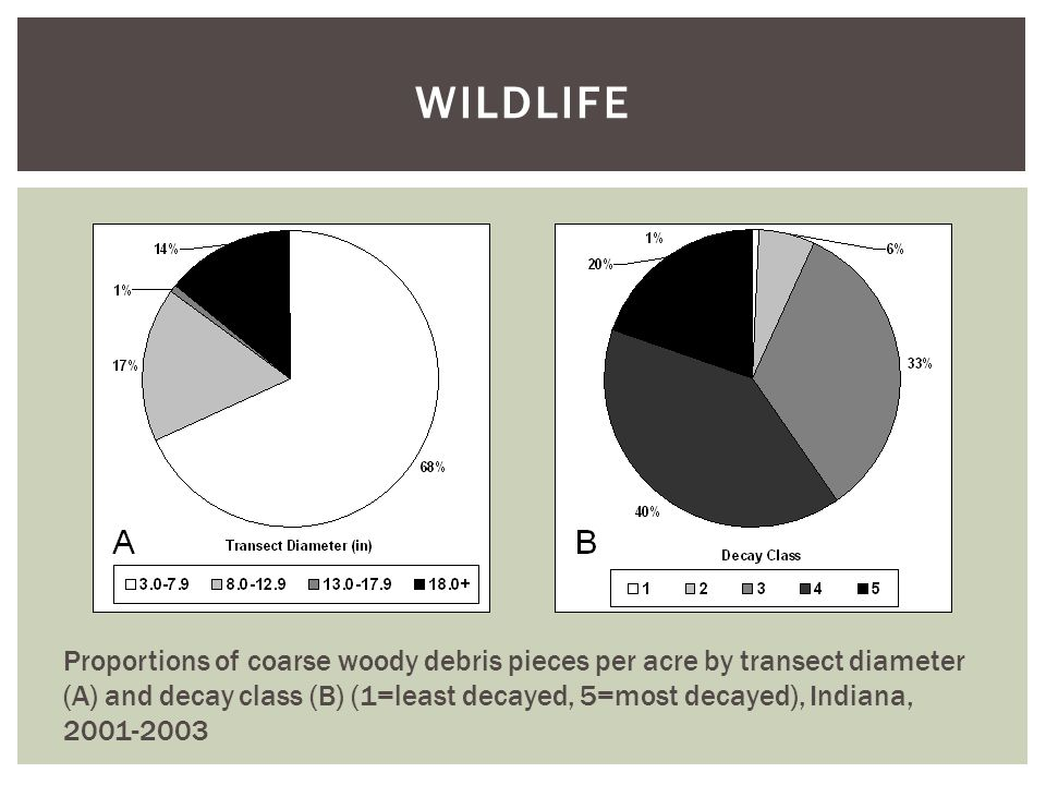 WILDLIFE Proportions of coarse woody debris pieces per acre by transect diameter (A) and decay class (B) (1=least decayed, 5=most decayed), Indiana, 2001-2003