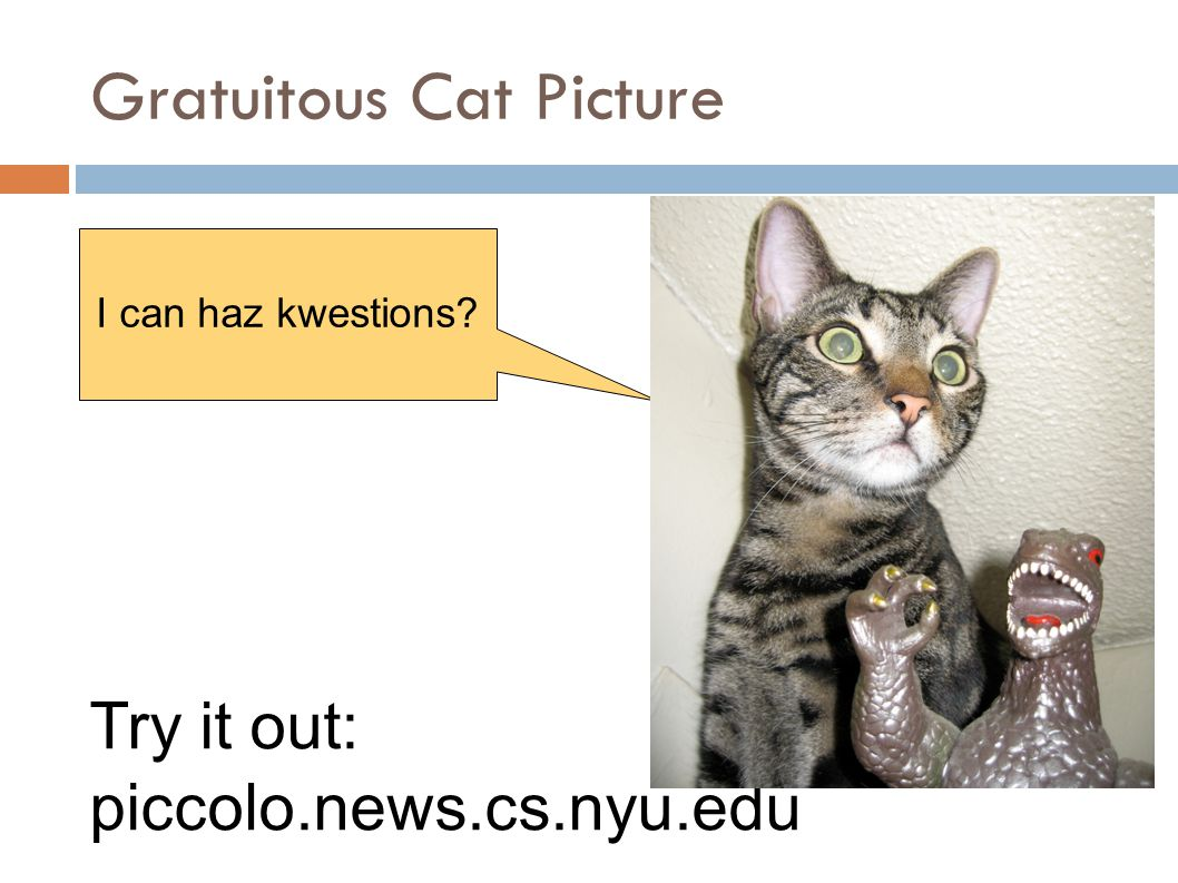 Gratuitous Cat Picture I can haz kwestions Try it out: piccolo.news.cs.nyu.edu
