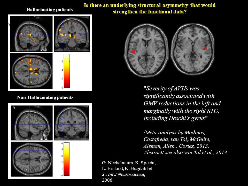 Non-Hallucinating patients Hallucinating patients G. Neckelmann, K. Specht, L. Ersland, K. Hugdahl et al. Int J Neuroscience, 2006