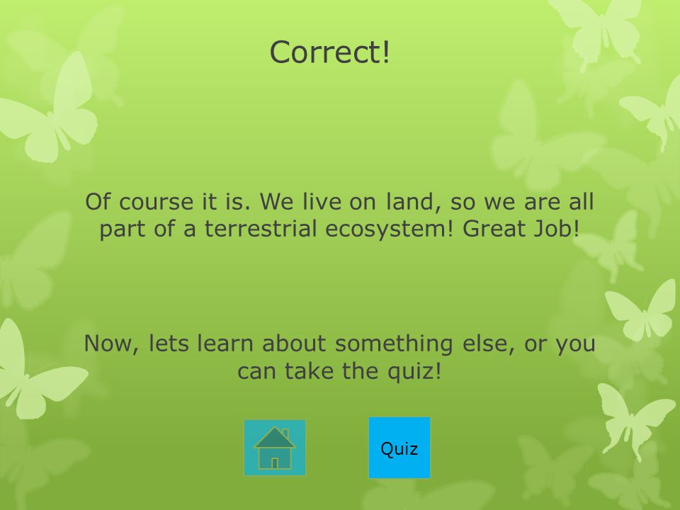 Correct! Of course it is. We live on land, so we are all part of a terrestrial ecosystem! Great Job! Now, lets learn about something else, or you can