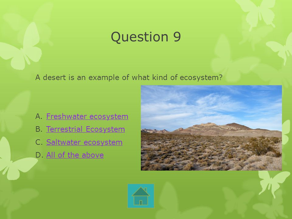 Question 9 A desert is an example of what kind of ecosystem? A.Freshwater ecosystemFreshwater ecosystem B.Terrestrial EcosystemTerrestrial Ecosystem C