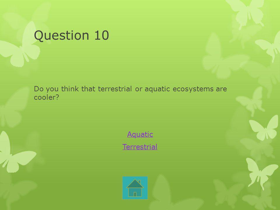 Question 10 Do you think that terrestrial or aquatic ecosystems are cooler? Aquatic Terrestrial