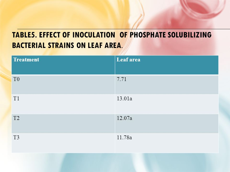 TABLE5. EFFECT OF INOCULATION OF PHOSPHATE SOLUBILIZING BACTERIAL STRAINS ON LEAF AREA.
