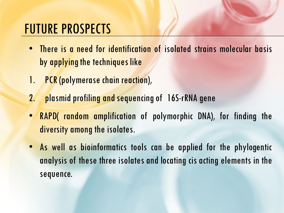 FUTURE PROSPECTS There is a need for identification of isolated strains molecular basis by applying the techniques like 1.PCR (polymerase chain reaction), 2.plasmid profiling and sequencing of 16S-rRNA gene RAPD( random amplification of polymorphic DNA), for finding the diversity among the isolates.