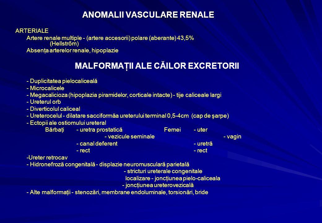 ANOMALII VASCULARE RENALE ANOMALII VASCULARE RENALE ARTERIALE Artere renale multiple - (artere accesorii) polare (aberante) 43,5% (Hellstrőm) Absenţa arterelor renale, hipoplazie MALFORMAŢII ALE CĂILOR EXCRETORII - Duplicitatea pielocaliceală - Microcalicele - Megacalicioza (hipoplazia piramidelor, corticale intacte) - tije caliceale largi - Ureterul orb - Diverticolul caliceal - Ureterocelul - dilatare sacciformăa ureterului terminal 0,5-4cm (cap de şarpe) - Ectopii ale ostiomului ureteral Bărbaţi - uretra prostaticăFemei - uter - vezicule seminale - vagin - canal deferent - uretră - rect - rect -Ureter retrocav - Hidronefroză congenitală - displazie neuromusculară parietală - stricturi ureterale congenitale localizare - joncţiunea pielo-caliceala - joncţiunea ureterovezicală - Alte malformaţii - stenozări, membrane endoluminale, torsionări, bride