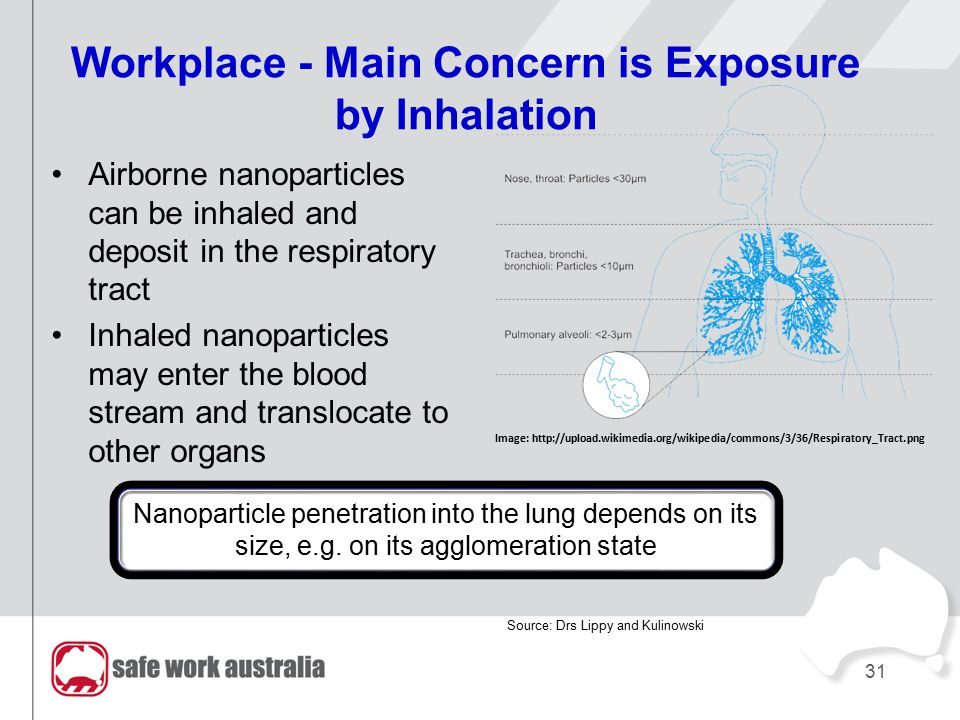 Workplace - Main Concern is Exposure by Inhalation Airborne nanoparticles can be inhaled and deposit in the respiratory tract Inhaled nanoparticles ma