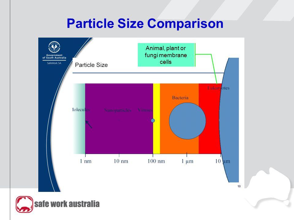 Particle Size Comparison Animal, plant or fungi membrane cells