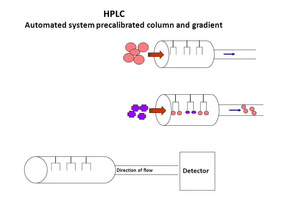 Borderline elevated HbA2 due to macrocytosis