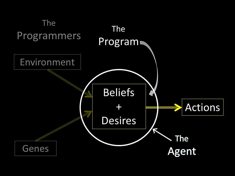 Beliefs + Desires Genes Environment Actions The Program The Programmers