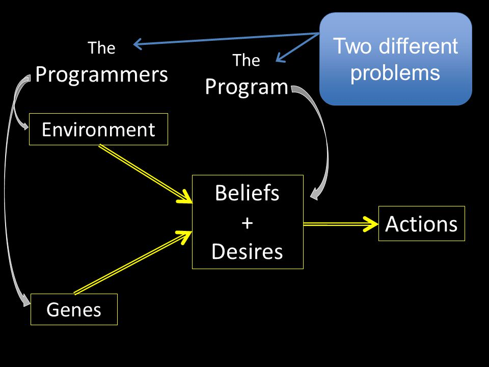 Beliefs + Desires Genes Environment Actions The Program The Programmers Two different problems