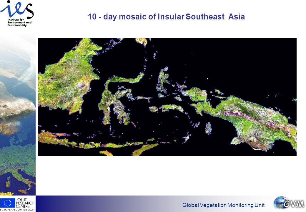 Global Vegetation Monitoring Unit 10 - day mosaic of Insular Southeast Asia
