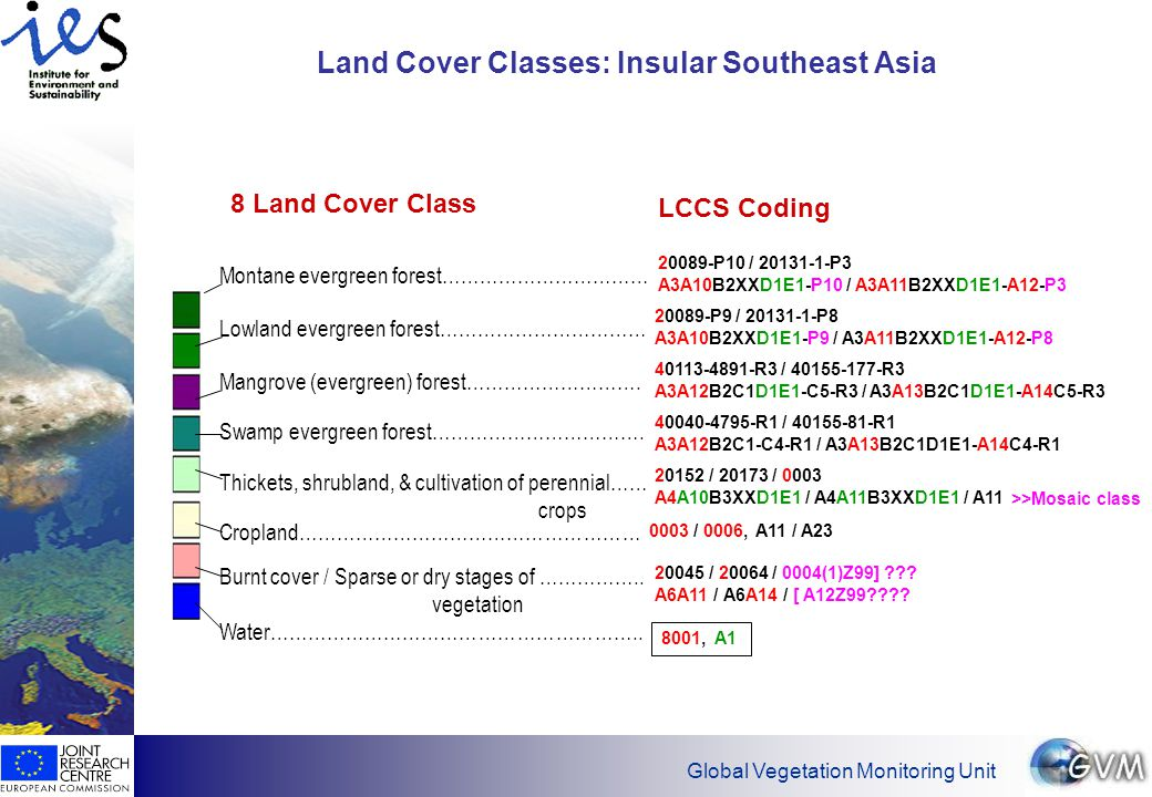 Global Vegetation Monitoring Unit Land Cover Classes: Insular Southeast Asia Montane evergreen forest…………………………… Lowland evergreen forest…………………………… Thickets, shrubland, & cultivation of perennial…… crops Swamp evergreen forest…………………………….