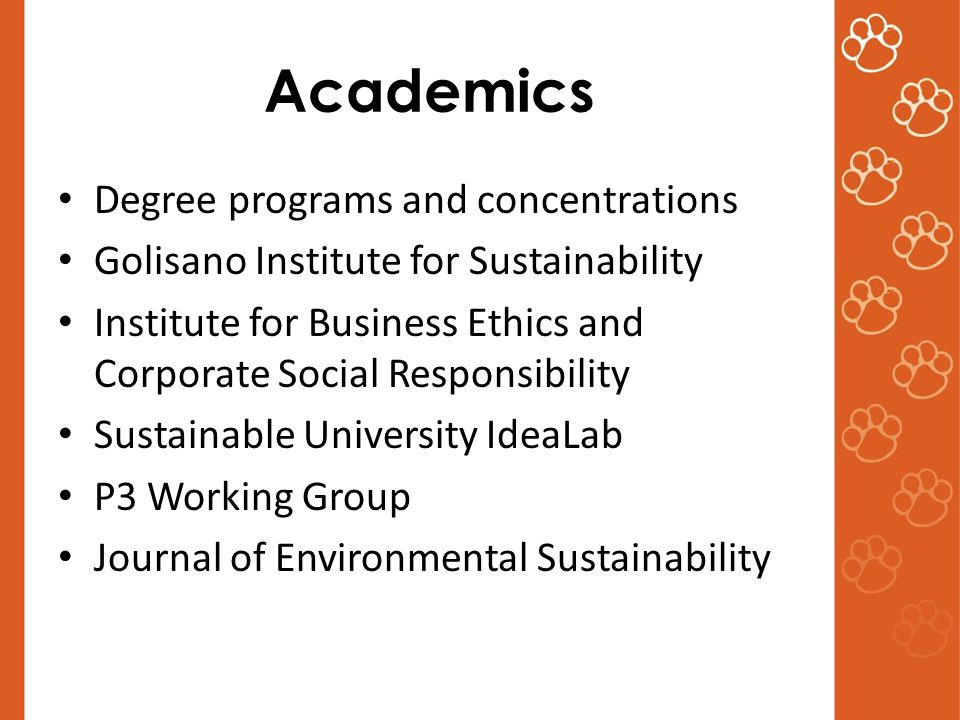 Academics Degree programs and concentrations Golisano Institute for Sustainability Institute for Business Ethics and Corporate Social Responsibility Sustainable University IdeaLab P3 Working Group Journal of Environmental Sustainability