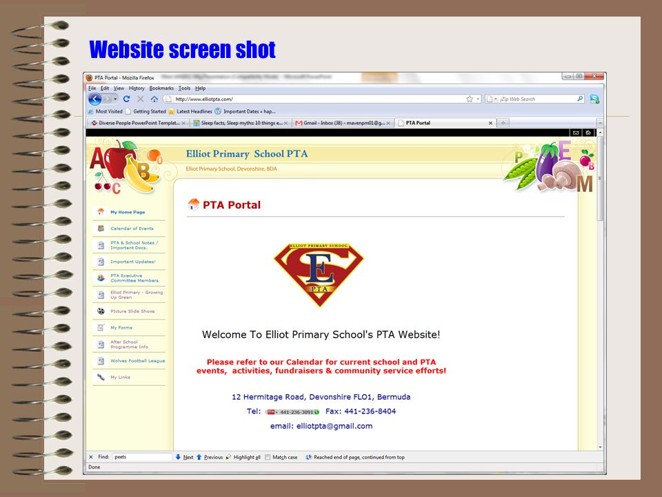Website screen shot