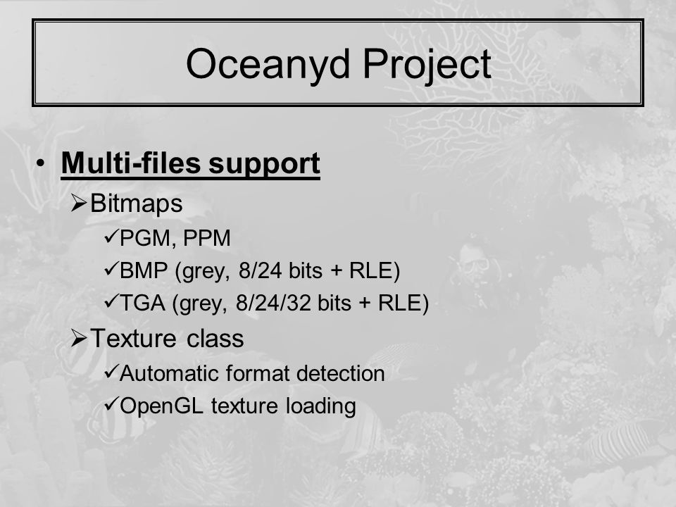 Oceanyd Project Multi-files support  Bitmaps PGM, PPM BMP (grey, 8/24 bits + RLE) TGA (grey, 8/24/32 bits + RLE)  Texture class Automatic format detection OpenGL texture loading