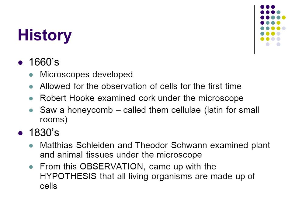 History 1660's Microscopes developed Allowed for the observation of cells for the first time Robert Hooke examined cork under the microscope Saw a honeycomb – called them cellulae (latin for small rooms) 1830's Matthias Schleiden and Theodor Schwann examined plant and animal tissues under the microscope From this OBSERVATION, came up with the HYPOTHESIS that all living organisms are made up of cells