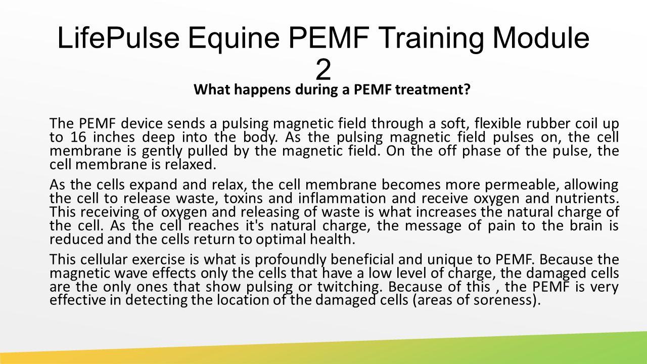 LifePulse Equine PEMF Training Module 2 What happens during a PEMF treatment.