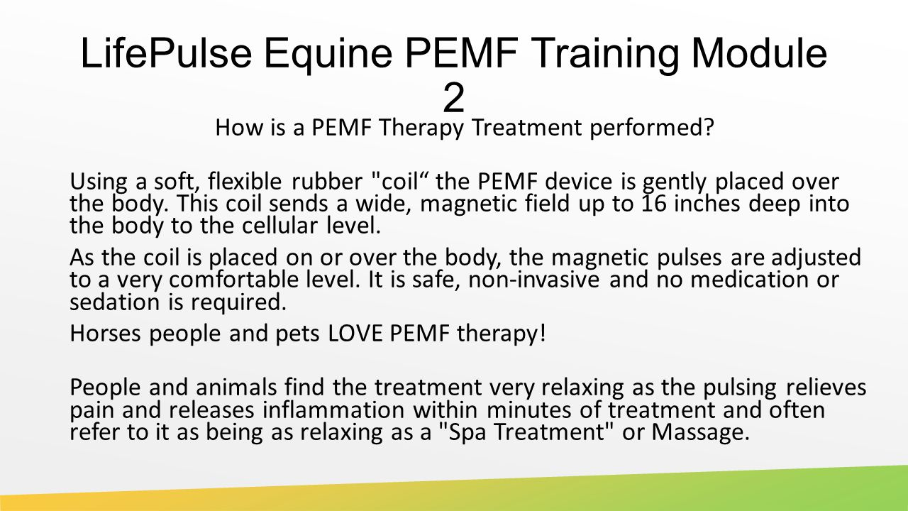 LifePulse Equine PEMF Training Module 2 How is a PEMF Therapy Treatment performed.