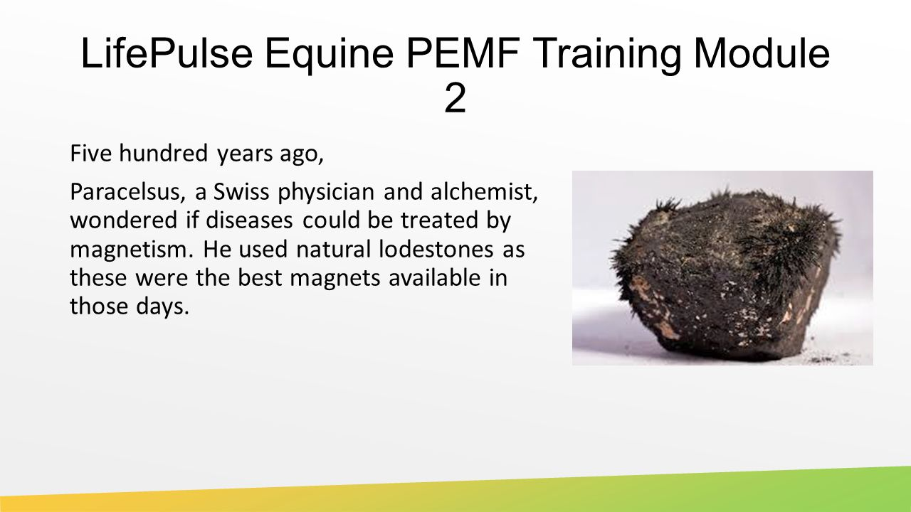 LifePulse Equine PEMF Training Module 2 Five hundred years ago, Paracelsus, a Swiss physician and alchemist, wondered if diseases could be treated by magnetism.