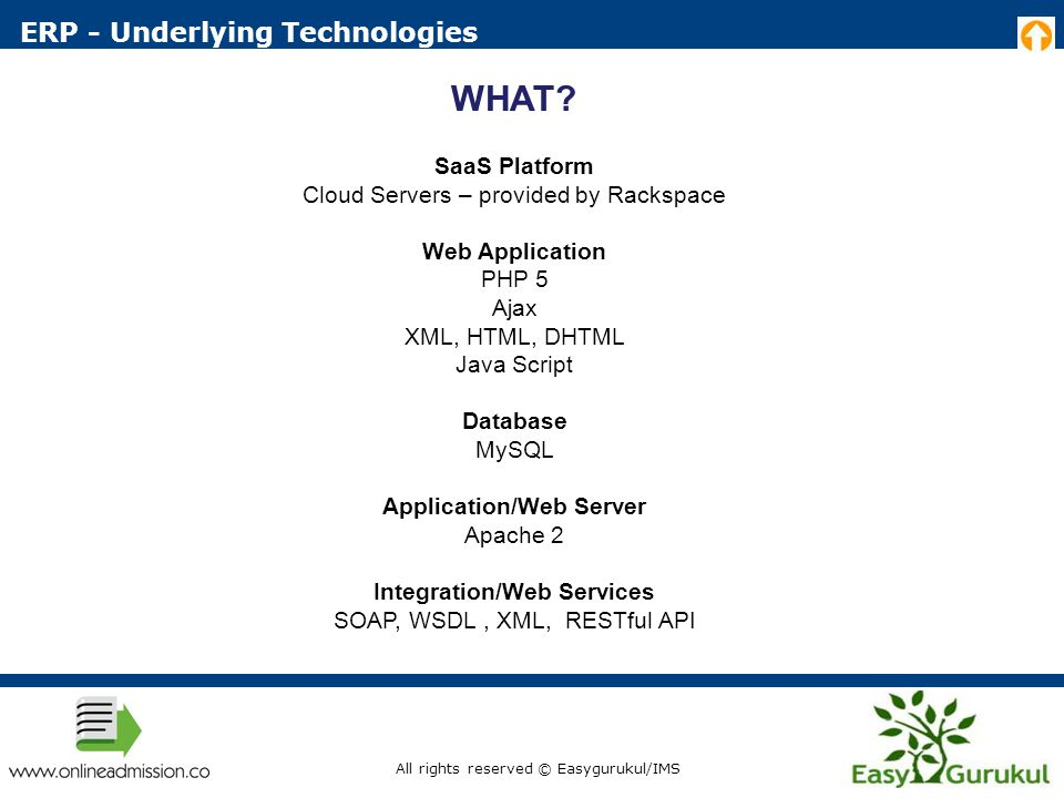 ERP - Underlying Technologies WHAT.