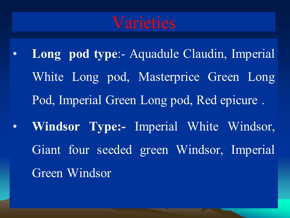 Varieties Long pod type:- Aquadule Claudin, Imperial White Long pod, Masterprice Green Long Pod, Imperial Green Long pod, Red epicure. Windsor Type:-