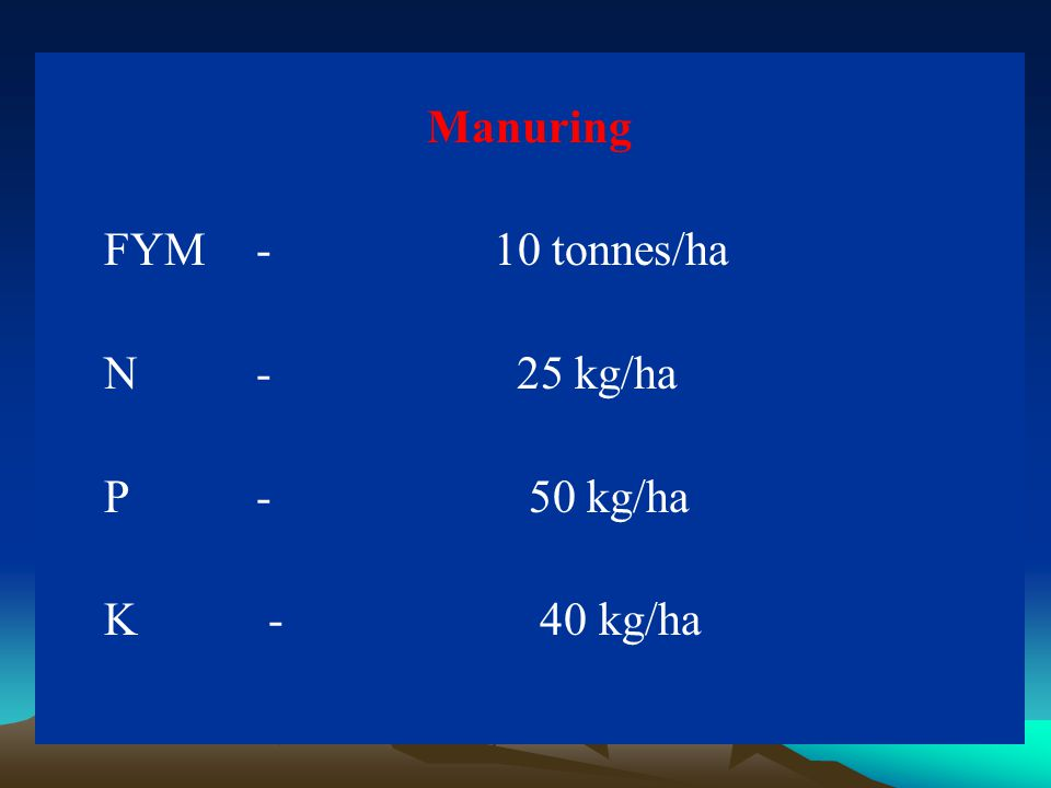 Manuring FYM- 10 tonnes/ha N - 25 kg/ha P - 50 kg/ha K - 40 kg/ha