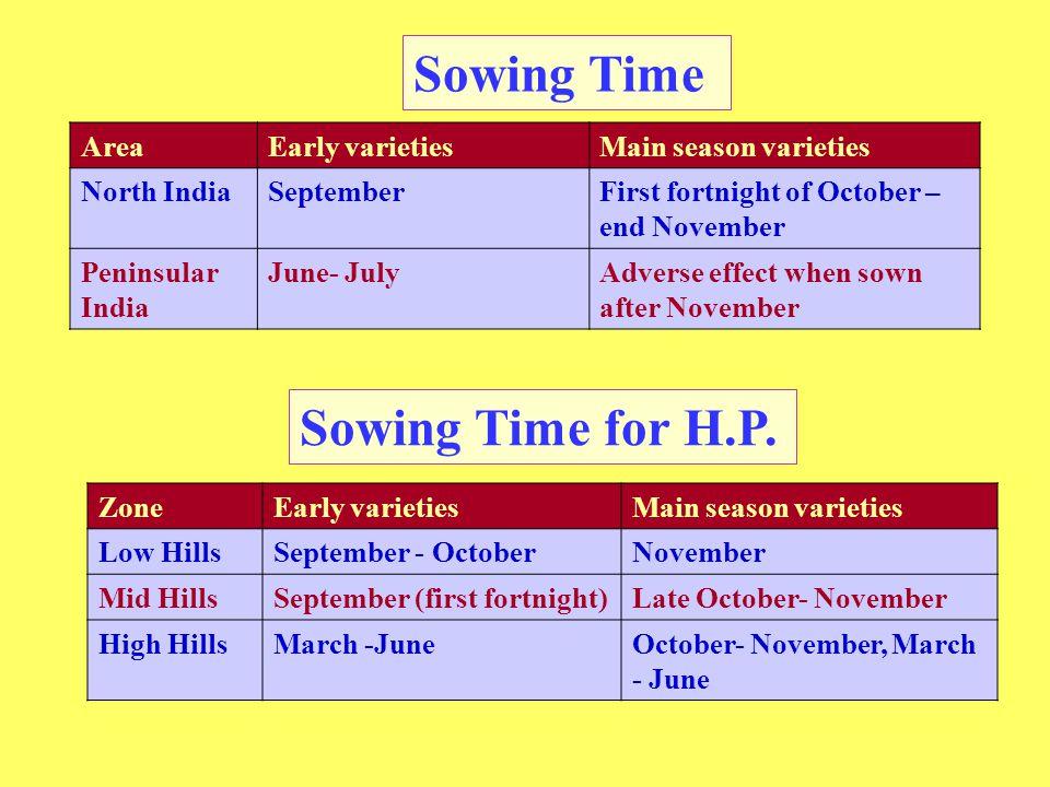 Sowing Time AreaEarly varietiesMain season varieties North IndiaSeptemberFirst fortnight of October – end November Peninsular India June- JulyAdverse