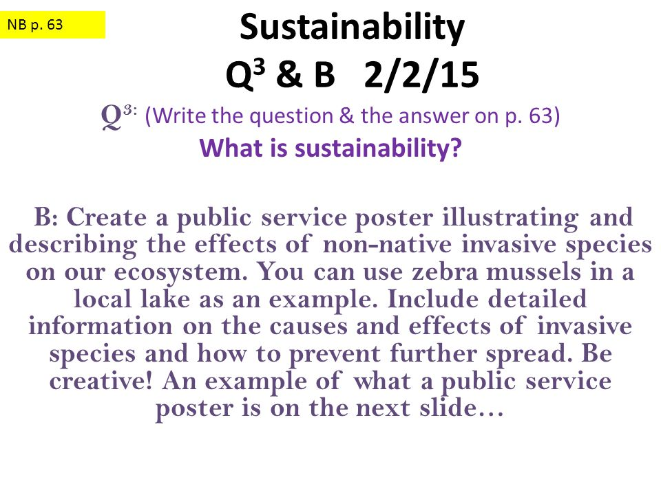 Q 3: (Write the question & the answer on p. 63) What is sustainability? B: Create a public service poster illustrating and describing the effects of n