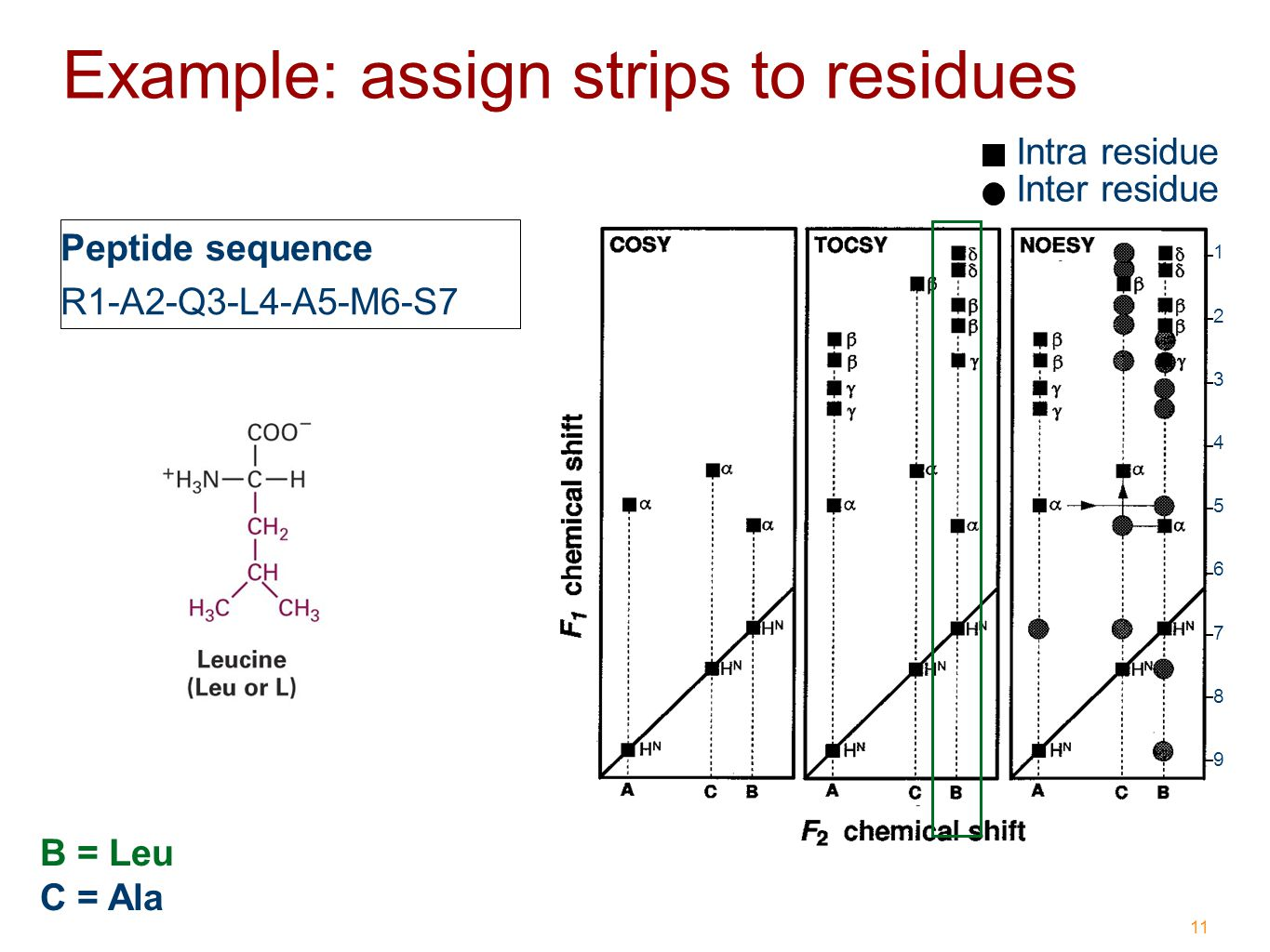 11 Example: assign strips to residues Intra residue Inter residue C = Ala B = Leu Peptide sequence R1-A2-Q3-L4-A5-M6-S7 1 2 3 4 5 6 7 8 9