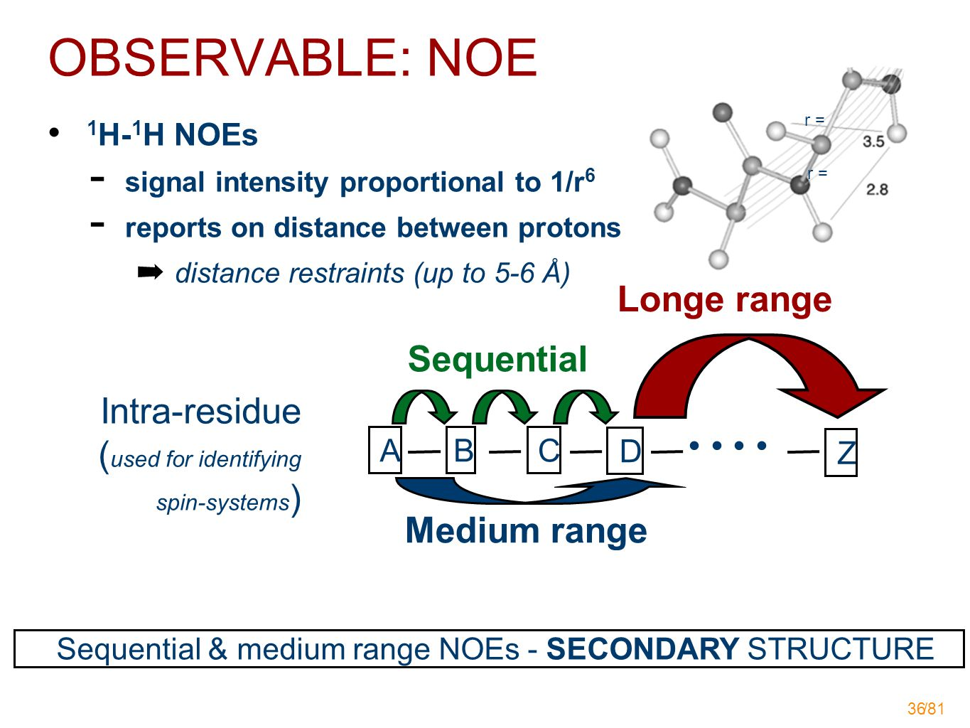 /81 36 1 H- 1 H NOEs  signal intensity proportional to 1/r 6  reports on distance between protons ➡ distance restraints (up to 5-6 Å) Sequential ABC D Z Intra-residue ( used for identifying spin-systems ) Medium range Sequential & medium range NOEs - SECONDARY STRUCTURE OBSERVABLE: NOE Longe range r =