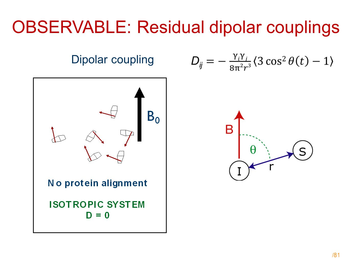 /81 OBSERVABLE: Residual dipolar couplings Dipolar coupling