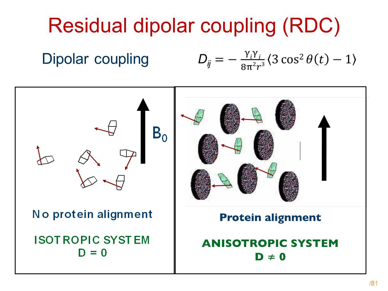 /81 Residual dipolar coupling (RDC) Dipolar coupling