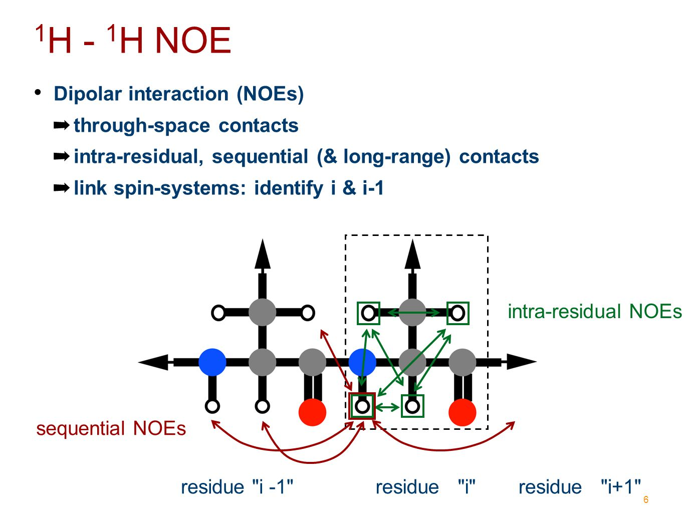 6 Dipolar interaction (NOEs) ➡ through-space contacts ➡ intra-residual, sequential (& long-range) contacts ➡ link spin-systems: identify i & i-1 residue i -1 residue i 1 H - 1 H NOE intra-residual NOEs sequential NOEs residue i+1