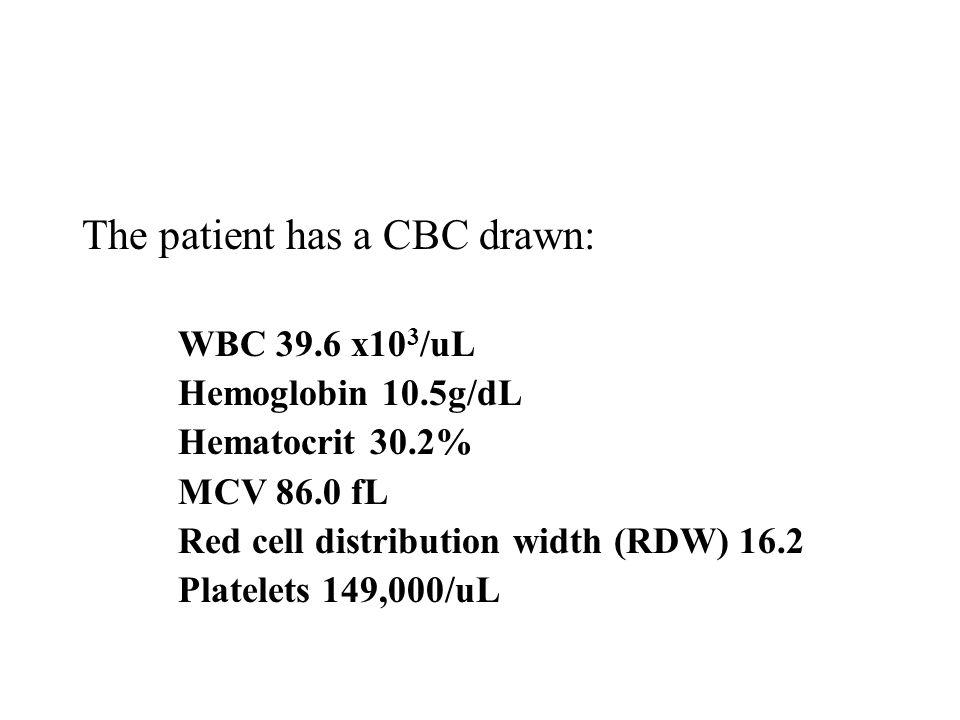 The patient has a CBC drawn: WBC 39.6 x10 3 /uL Hemoglobin 10.5g/dL Hematocrit 30.2% MCV 86.0 fL Red cell distribution width (RDW) 16.2 Platelets 149,000/uL