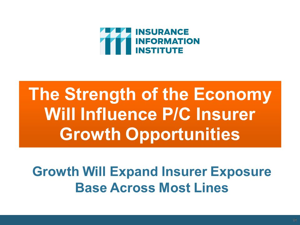 The Strength of the Economy Will Influence P/C Insurer Growth Opportunities 18 Growth Will Expand Insurer Exposure Base Across Most Lines 12/01/09 - 9pm 18